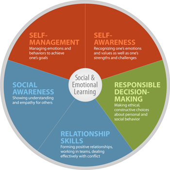 Social-emotional learning programs focus on developing an individual's competency across five core areas.